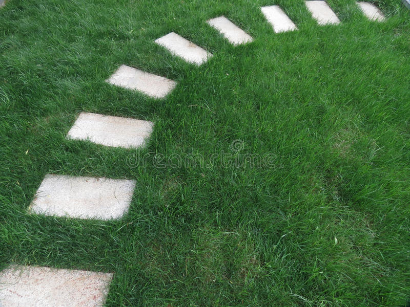 石路在庭院里