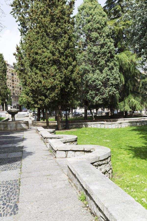 石道路在一个绿色公园在城市 图库摄影