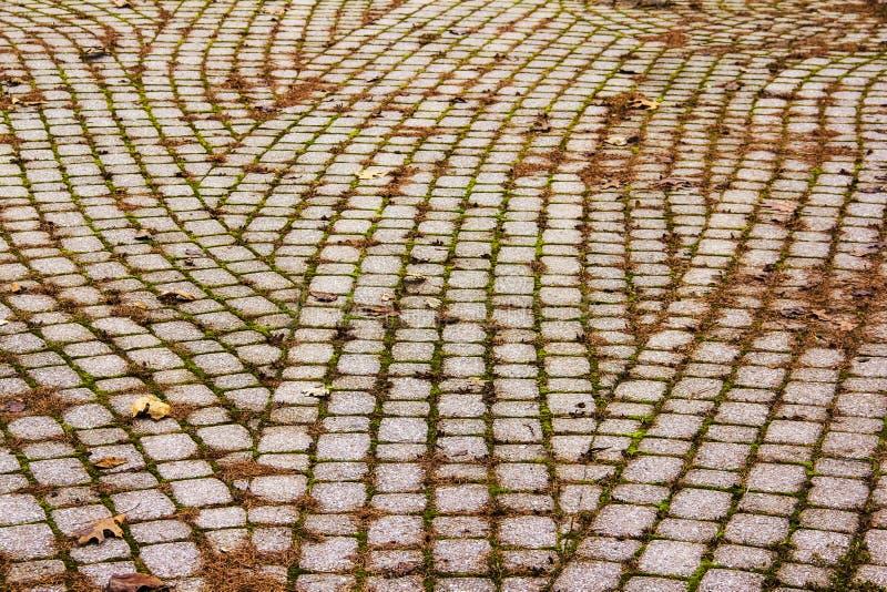 石道路在高地公园罗切斯特,纽约 免版税图库摄影