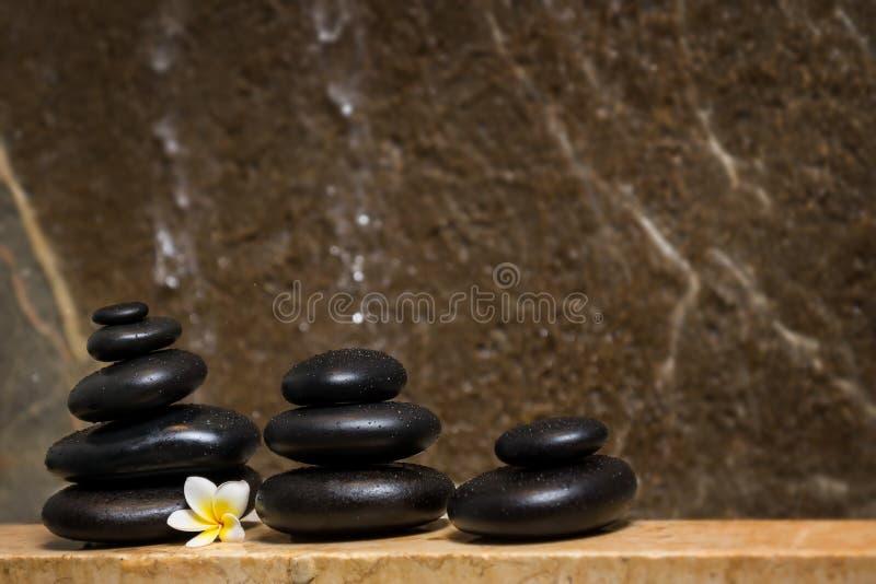 石头和花 免版税库存图片