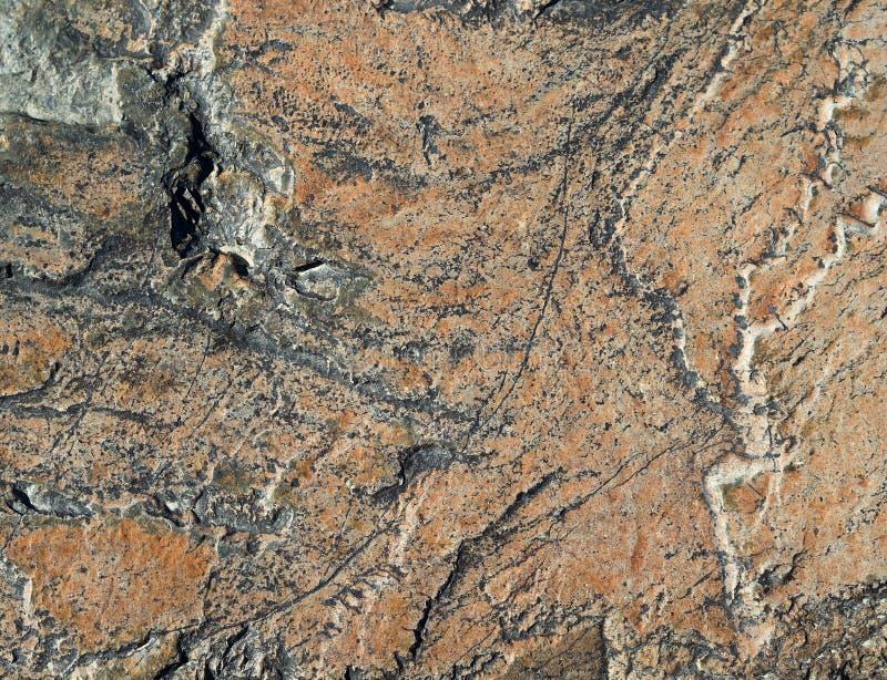 石头橙色表面与绿色树荫凹痕的 库存照片