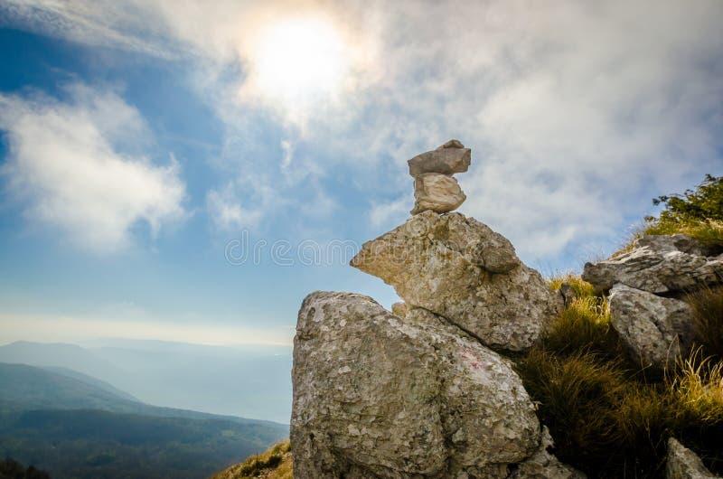 石头生物  免版税库存图片