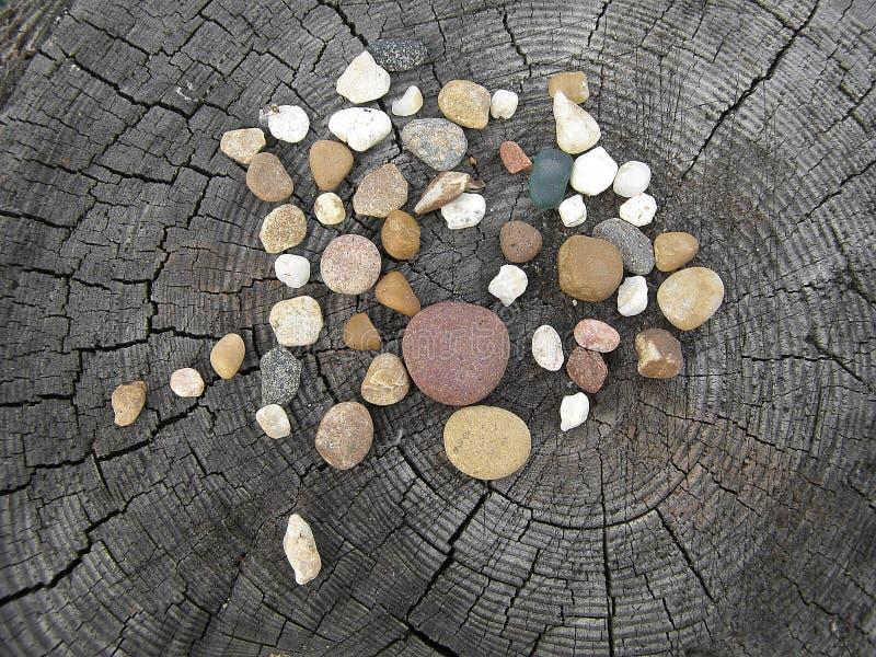 石头的构成在树桩的 仍然1寿命 小卵石 免版税图库摄影