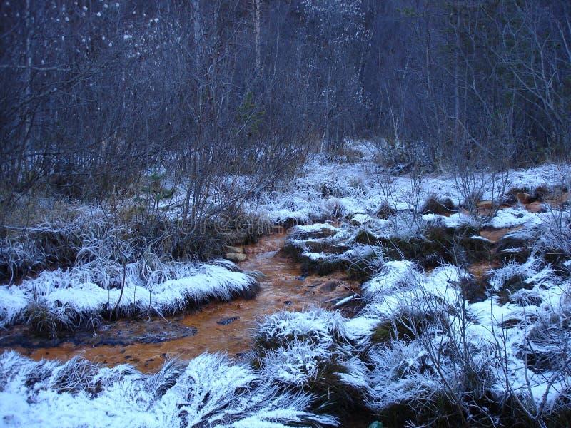 矿物春天在冬天 库存图片