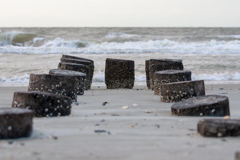 码头打桩光滑的残余  免版税库存图片
