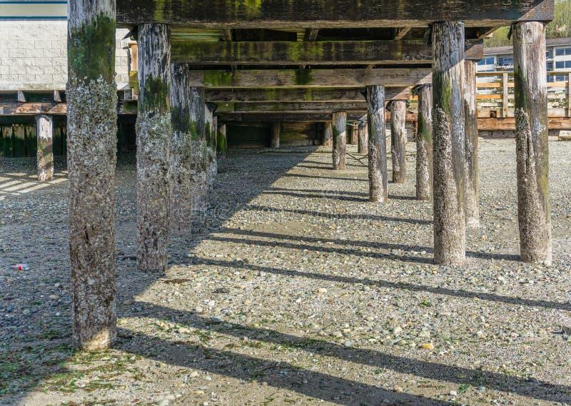 码头打桩处于低潮中2 免版税库存图片