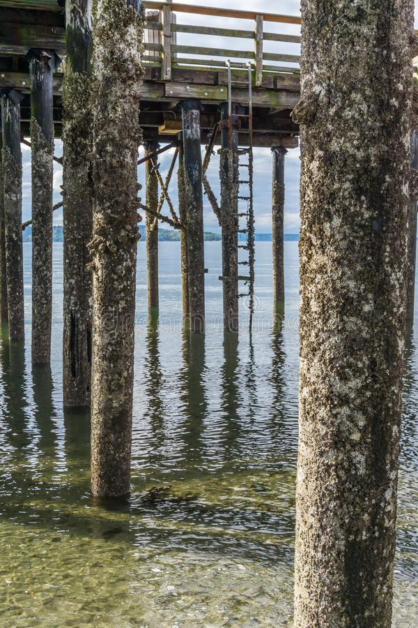 码头打桩处于低潮中3 免版税库存图片