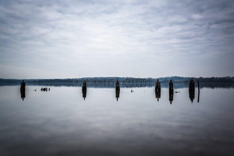 码头打桩在波托马克河,在亚历山大,弗吉尼亚 免版税库存照片