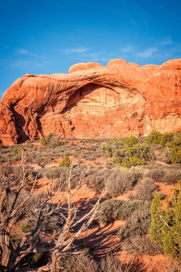 砂岩岩层在拱门国家公园 免版税库存图片