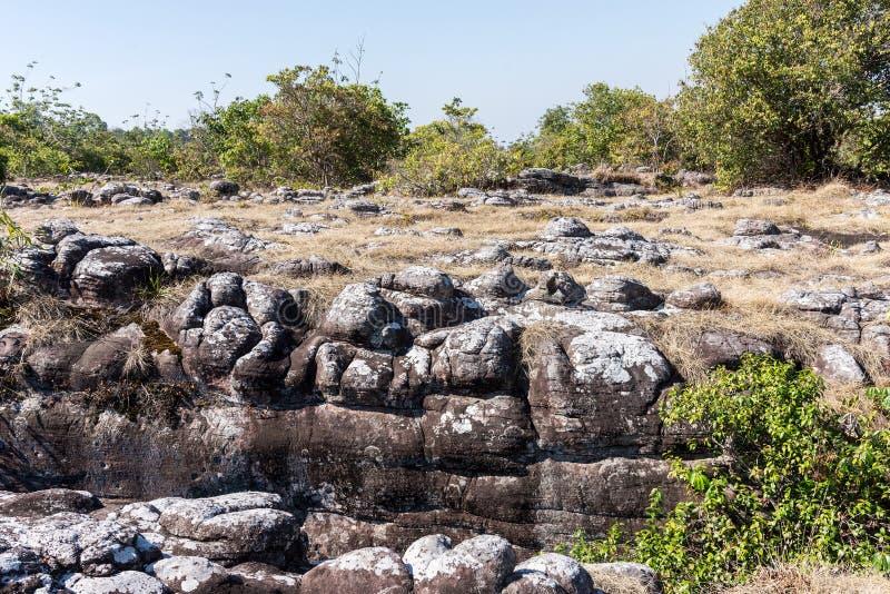 砂岩结裂口 库存图片