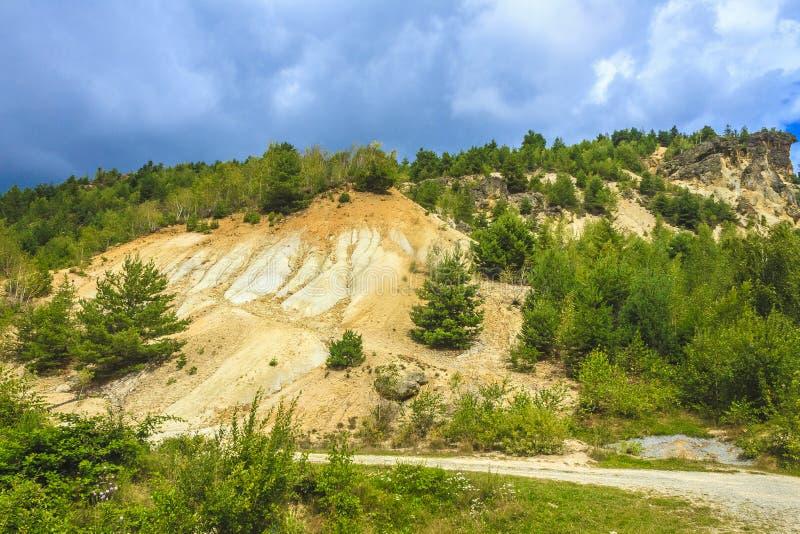 砍伐森林和侵蚀 免版税库存图片