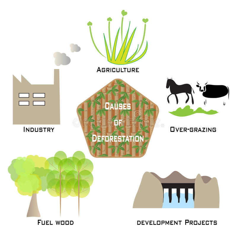 砍伐森林Infographic的原因 向量例证