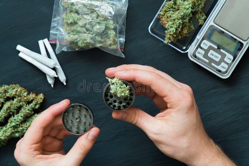 研在一个人的手上的大麻的研磨机以很大数量新鲜的大麻坏和联接为背景 图库摄影