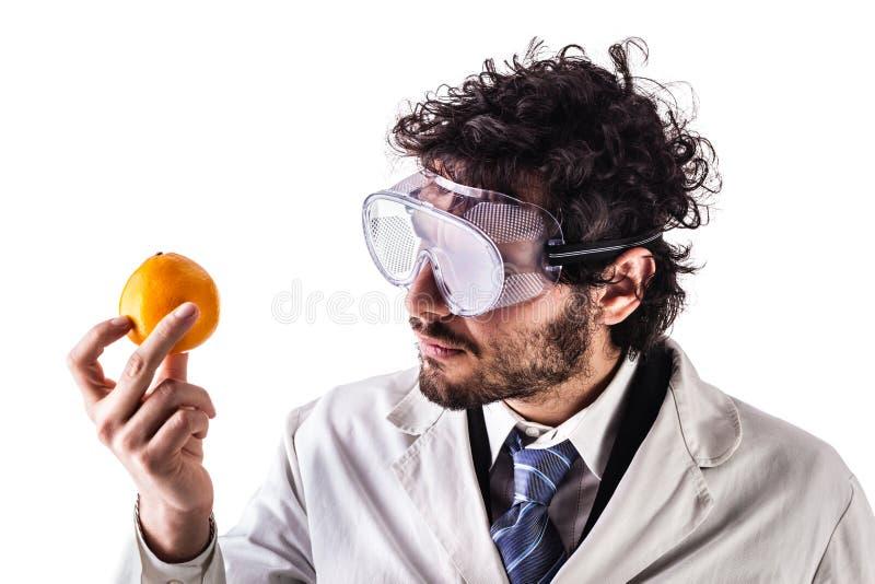 研究员和桔子 免版税库存照片