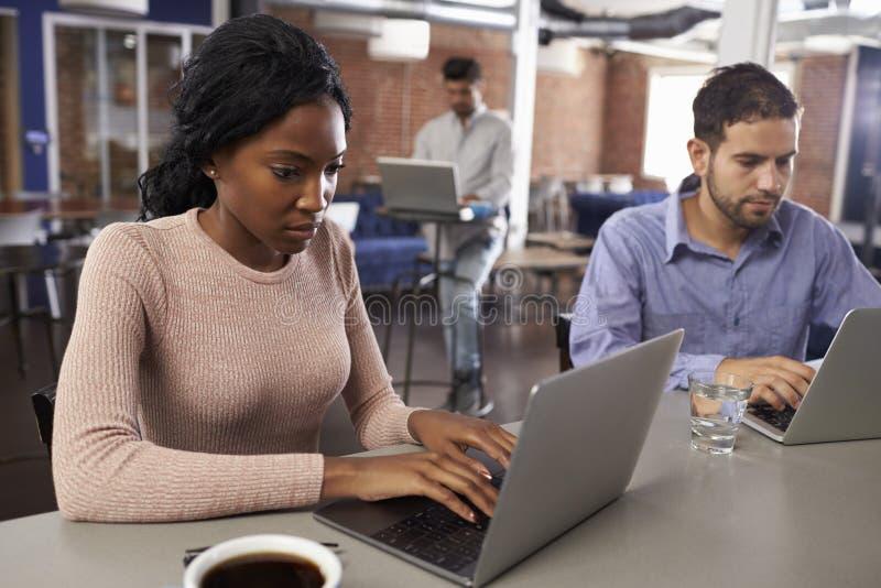 研究在办公室咖啡馆的膝上型计算机的买卖人 免版税库存照片