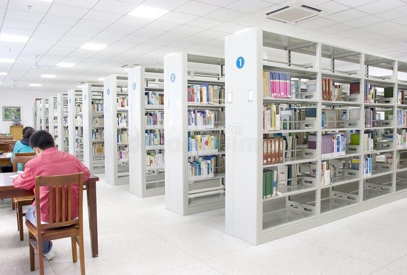 研究在图书馆里   免版税库存照片