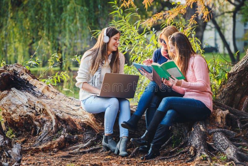 研究学校项目的小组女学生 库存图片