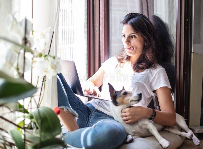 研究有她的狗的一台膝上型计算机的少妇 库存照片