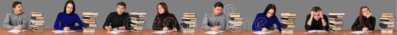 研究任务的学生 免版税库存照片