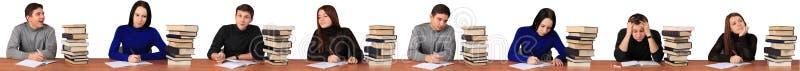 研究任务的学生 库存照片