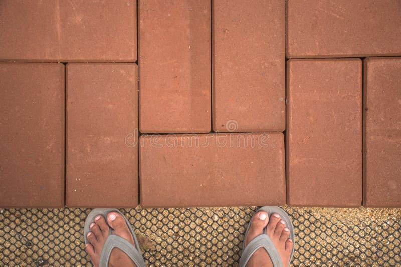砖在DIY家庭菜园的步行方式 纹理 背景 装饰 库存照片