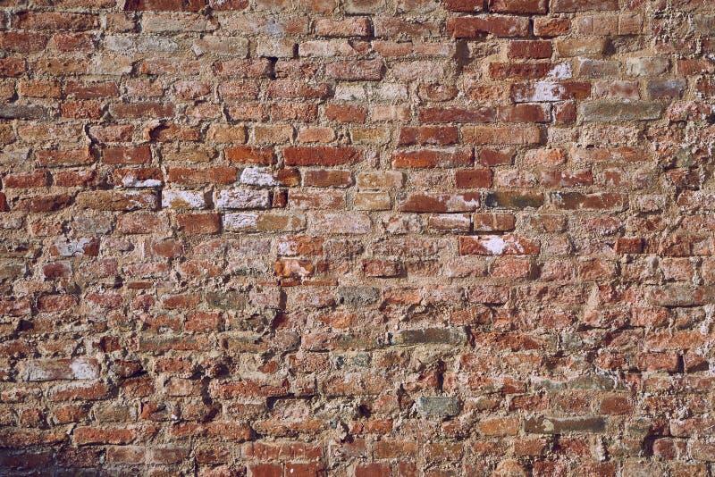 砖墙特写镜头 库存照片