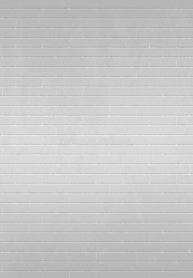 砖墙白色 库存图片