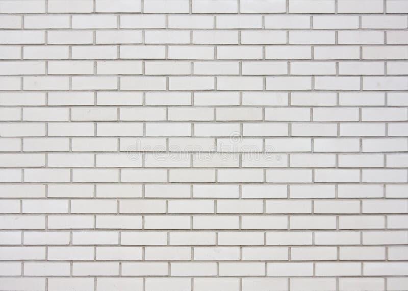 砖墙白色 免版税库存图片