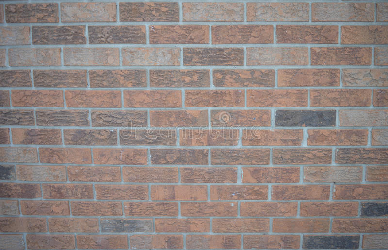 砖墙的平的图象 库存图片