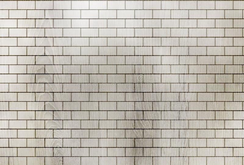 砖墙背景和纹理 皇族释放例证