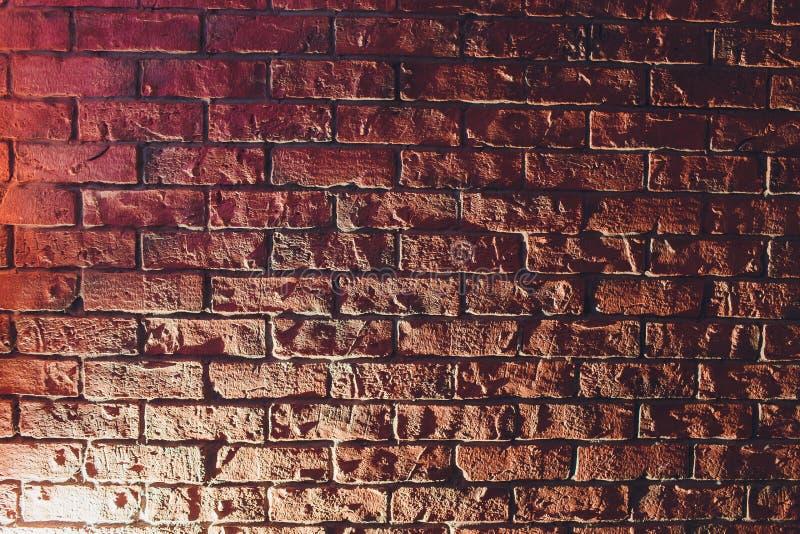 砖墙,背景,与光线影响的霓虹灯低调照片 库存图片