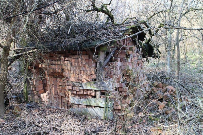 砖存贮在风雨棚的在高地的老农场在Myjava附近 免版税库存照片