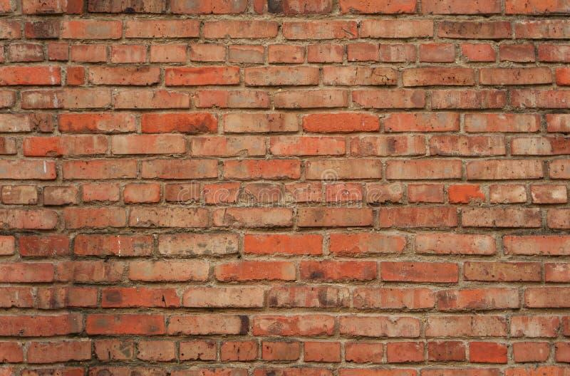 砖无缝的纹理墙壁 库存图片