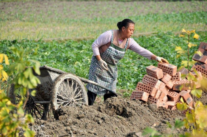 砖瓷pengzhou妇女 库存照片