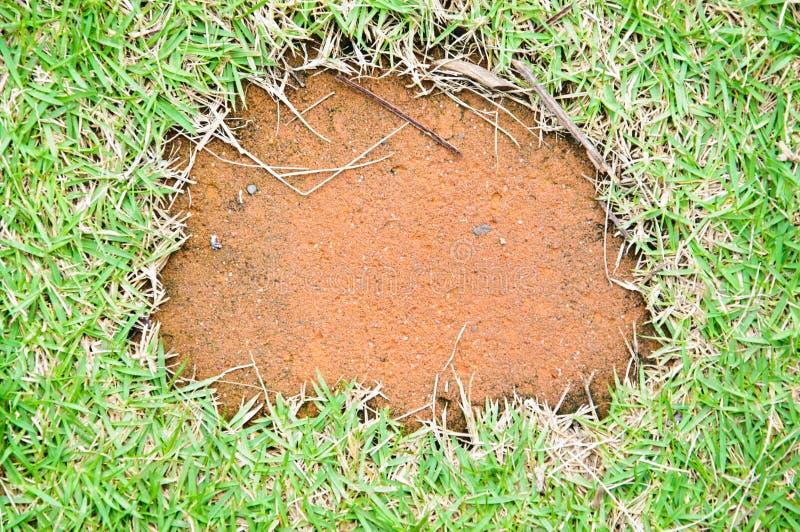 Download 砖用步行方式 库存照片. 图片 包括有 从事园艺, 地球, browne, 方式, 边缘, 不列塔尼的, 纹理 - 59110204