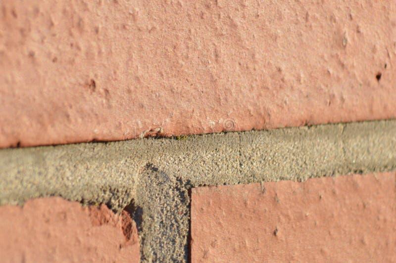 砖纹理和水泥 图库摄影