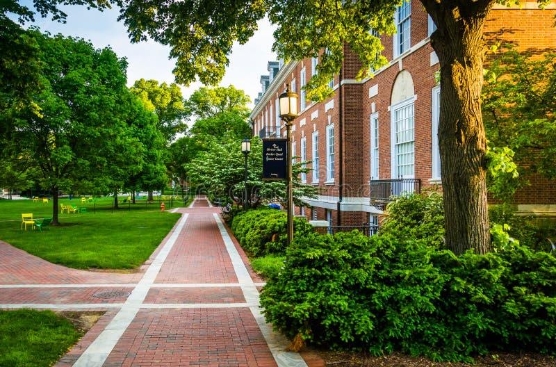 砖走道和大厦在霍普金斯大学,巴尔的摩 免版税库存图片