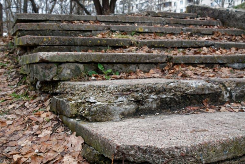 砖难看的东西有秋天叶子、背景网站的或移动设备的石头台阶 库存照片
