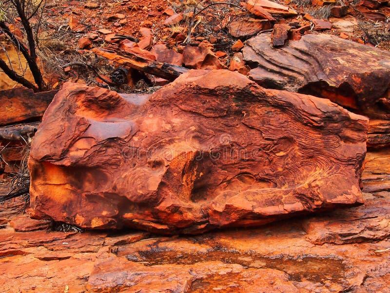 破旧和被腐蚀的红色岩石, Canyon,红色中心,澳大利亚国王 库存图片