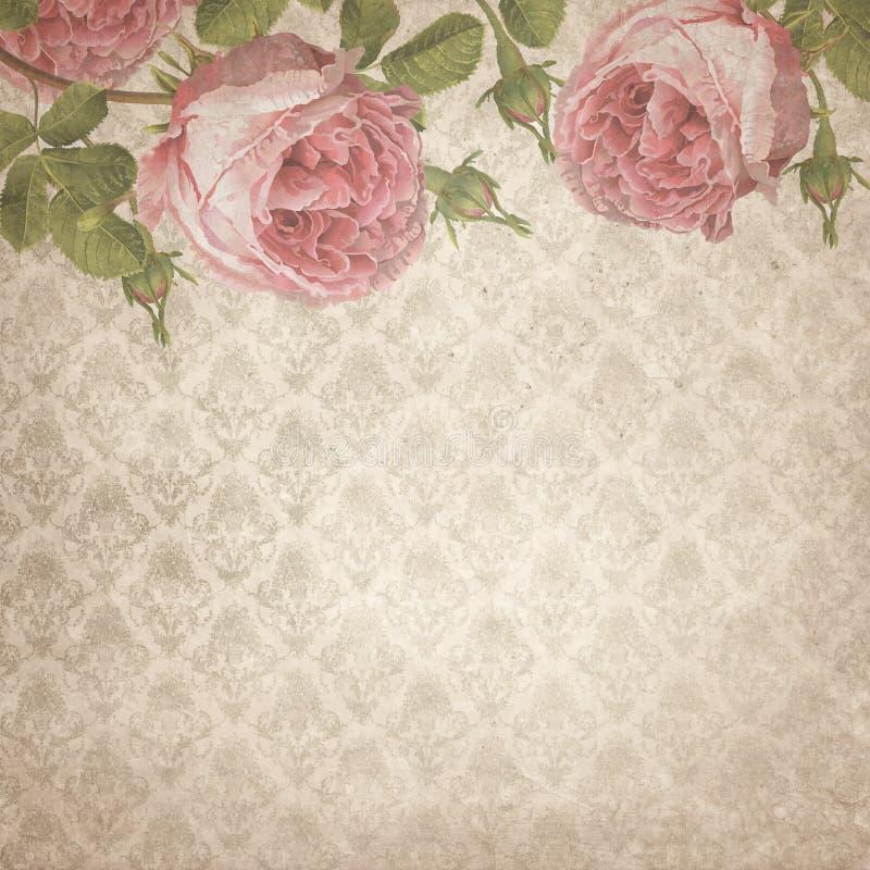 破旧的别致的葡萄酒玫瑰-摄政样式-数字式纸背景-中立锦缎样式 皇族释放例证