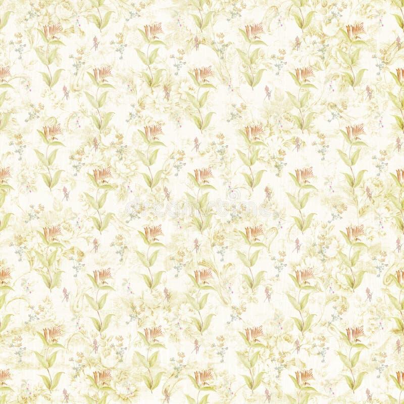 破旧的老植物的华丽样式纸纹理 向量例证