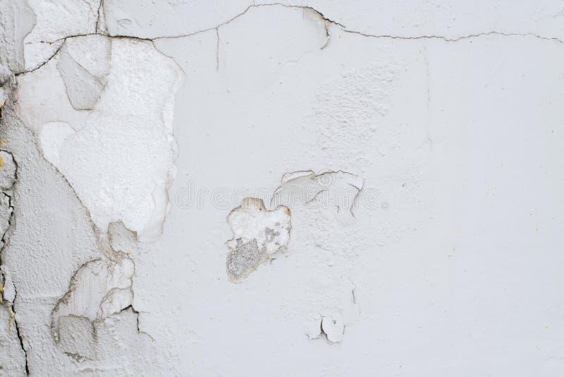 破裂和剥在白色墙壁上的油漆 免版税图库摄影