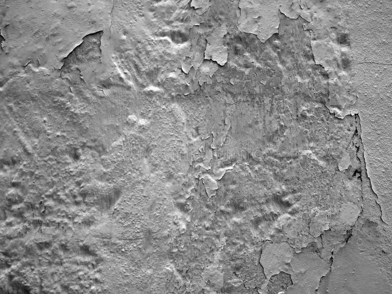 破裂的灰色剥的油漆纹理在一个老织地不很细混凝土墙上树荫下  免版税图库摄影