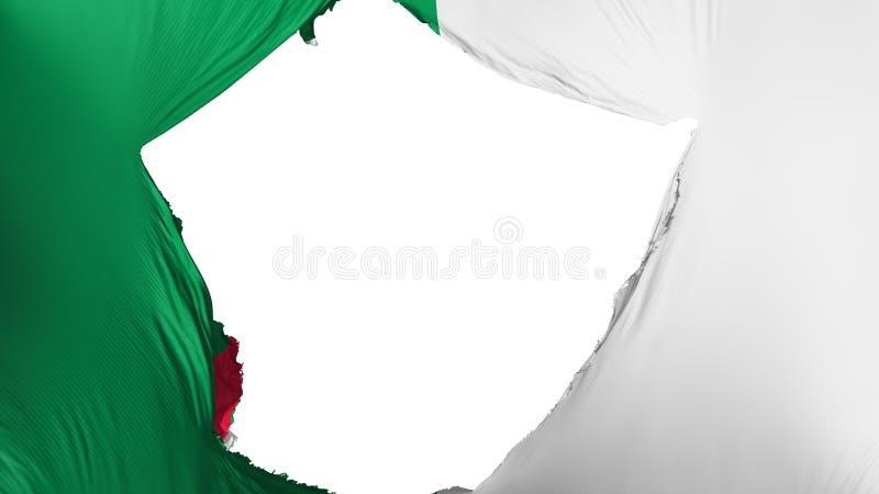破裂的阿尔及利亚旗子 皇族释放例证