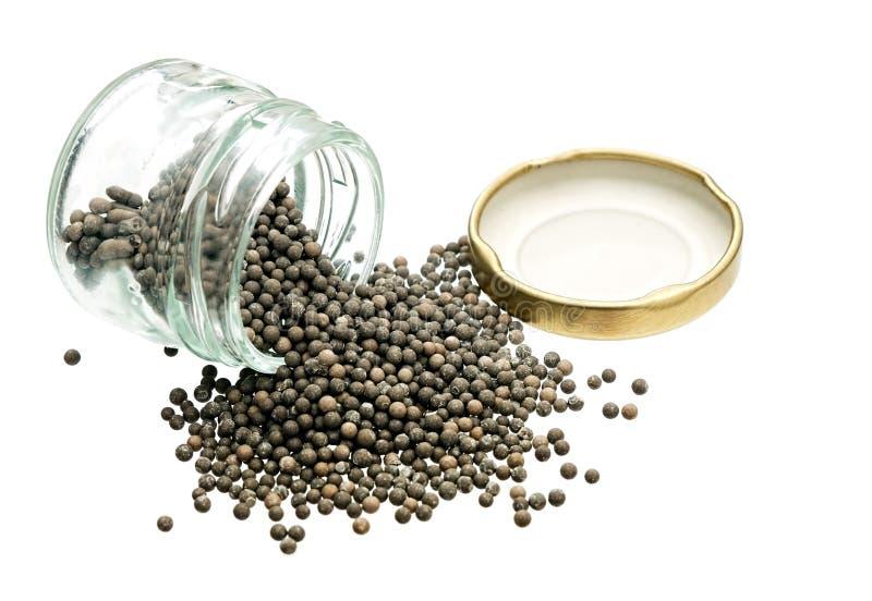 硅土gell成串珠状-干燥剂,对白色的湿度控制 库存照片