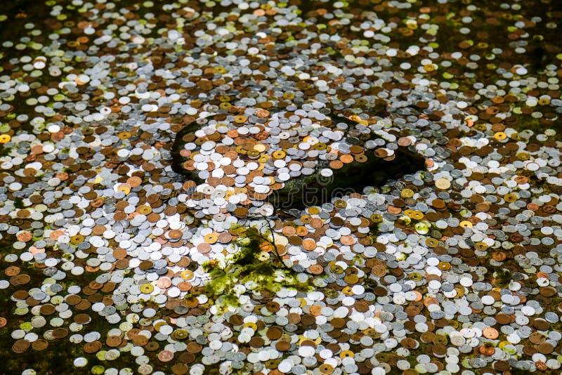 硬币在一个池塘在京都,好运的日本 图库摄影