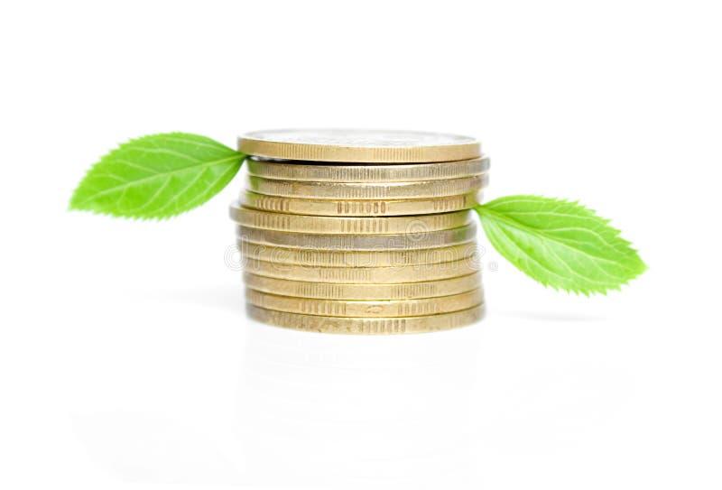 硬币绿色叶子 免版税库存图片
