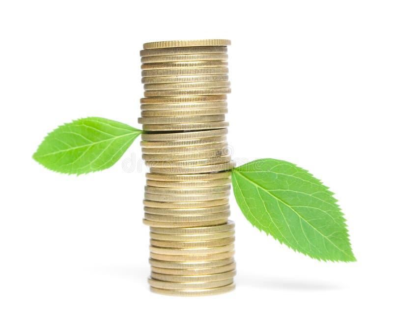 硬币绿色叶子 免版税库存照片