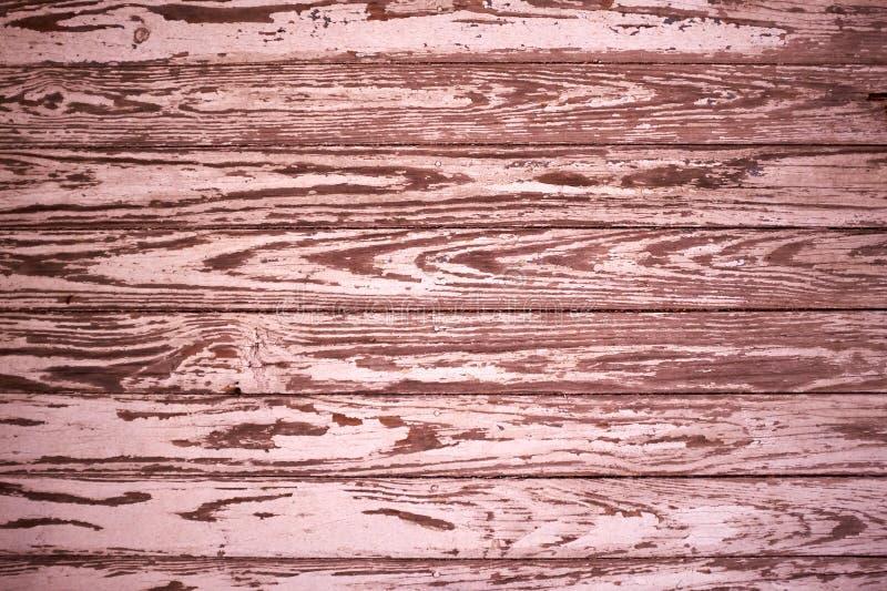硬木板背景纹理与五谷的 图库摄影