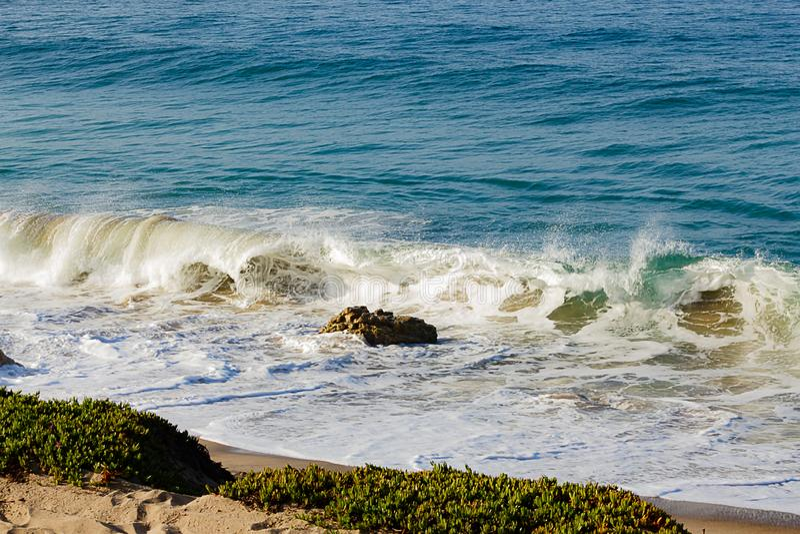 碎波对与海洋膨胀、沙子,岩石和iceplant的起泡沫的回流 免版税库存图片